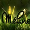 Meet Meline